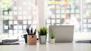 small business website design image